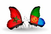pic of eritrea  - Two butterflies with flags on wings as symbol of relations Morocco and Eritrea - JPG