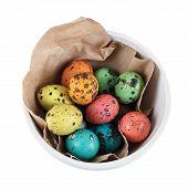 Painted Quail Eggs