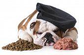 dog food debate - bulldog chef laying between pile of kibble and raw dog food