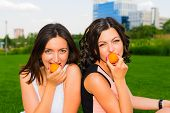 pic of manicured lawn  - Two young happy girlfriends picnicking on the lawn on green grass and enjoying apricots - JPG