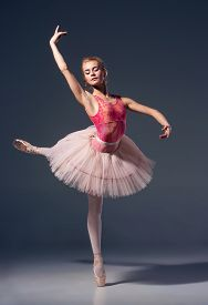 picture of ballerina  - Portrait of the ballerina in ballet pose on a grey background. Ballerina is wearing  pink tutu and pointe shoes ** Note: Soft Focus at 100%, best at smaller sizes - JPG