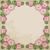 pic of geranium  - Retro background with colorful geraniums and old paper - JPG