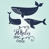 image of whale-tail  - Whales are cute - JPG
