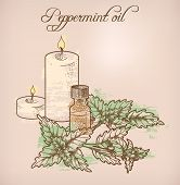 image of peppermint  - Illustration of peppermint essential oil and candles - JPG