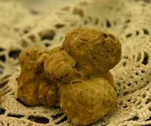 Real White Truffle