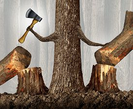 picture of cutting trees  - Competitive strategy concept as a ruthless tree eliminating competition by cutting them down as a career and ambition business idea as a metaphor with a powerful tree holding an ax moving market competitors with branches shaped as human arms - JPG