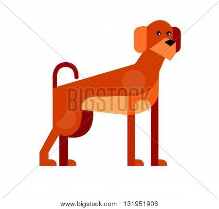 poster of Vector flat dog. Vector detailed dog Isolated on white. Vector detailed dog poster. Cute dog vector background.  Vector dog.