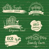 Organic Food Label And Logos Set. Farm Fresh Label And Logo Elem poster