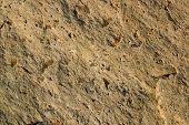 Granite Texture-Speckled