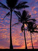 Praia ao pôr do sol