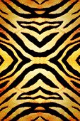Abstract modern fabric texture