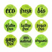Gluten, Lactose, Sugar, Gmo Free, Bio, Eco, Fresh Calligraphic Handwriting Lettering With Leaf, Cube poster