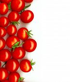 bright red tomatoes isolated on a white background