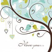 Twee vogels in de liefde