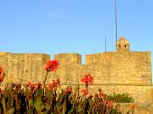 Fort Of Sao Joao Baptista Da Foz