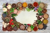 Spice and herb abstract border with fresh and dried herbs and spices on parchment paper and rustic w poster