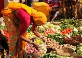 PUSHKAR, INDIA - NOVEMBER 19:Unidentified woman sells vegetables at fair on November 19, 2010 in Pus