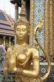 Wat Phra Kaeo golden creature
