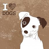 Cute Jack Russell Terrier. Brilliant card for dog lovers!