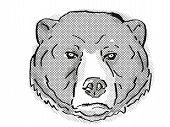 Retro Cartoon Style Drawing Of Head Of A Sun Bear Or Helarctos Malayanus, An Endangered Wildlife Spe poster