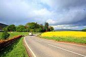 Rural Scottish road with fields of rape