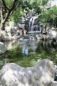 Cascada serena