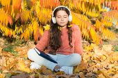 Schoolgirl Study. Girl Read Book Autumn Day. Self Education Concept. Child Enjoy Reading. Visual And poster