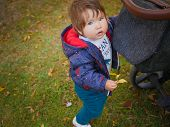 Baby And Yellow Leaf. Lovely Baby With Yellow Leaf Outdoors. Lovely Baby Age Of 1 Year Outdoors In A poster
