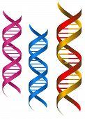 Elementos de DNA