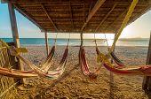 Playa y hamacas brillantes