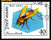 Vintage  Postage Stamp. Insect Ong Vang.