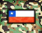 pic of ami  - Amy camouflage uniform with flag on it Chile - JPG