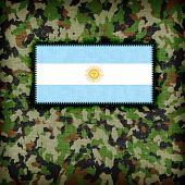 pic of ami  - Amy camouflage uniform with flag on it Argentina - JPG
