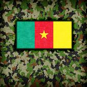 picture of ami  - Amy camouflage uniform with flag on it Cameroon - JPG