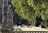 Parque De Maria Luisa (maria Luisa Park), Seville, Spain