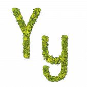 stock photo of storybook  - Leafy storybook font depicting a letter Y in upper and lower case - JPG