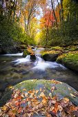 Silky Autumn Stream In The Smokies