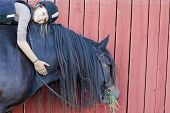 pic of bareback  - A teenager with helmet and protective vest sitting bareback on a North Swedish Horse - JPG