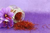 picture of saffron  - Dried saffron spice and Saffron flower - JPG