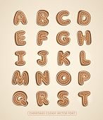 Christmas cookie alphabet. Vector font.