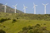 picture of wind energy  - windmills behind tarifa cadiz province andalusia spain  - JPG