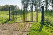image of dike  - Iron gate with its shadow in the foreground and a dike with trees in the background - JPG