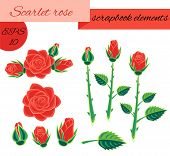 Scarlet Rose Scrapbook Elements