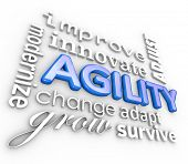 Agility 3d Word Collage Improve Innovate Adjust
