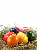 Easter eggs on a grass background