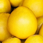 Pomelo Fruit Background. Pomelo Fruit On A Market Closeup. Citrus Background.