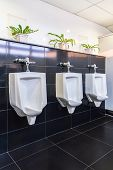 Three White Urinals In Men Bathroom