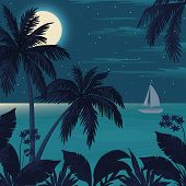 picture of moon-flower  - Exotic tropical landscape with moon night sky - JPG