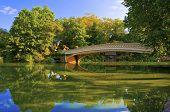 Central Park and Bow Bridge, Manhattan New York