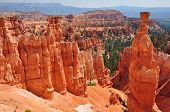 Panorama Of Bryce Canyon Utah, Usa
